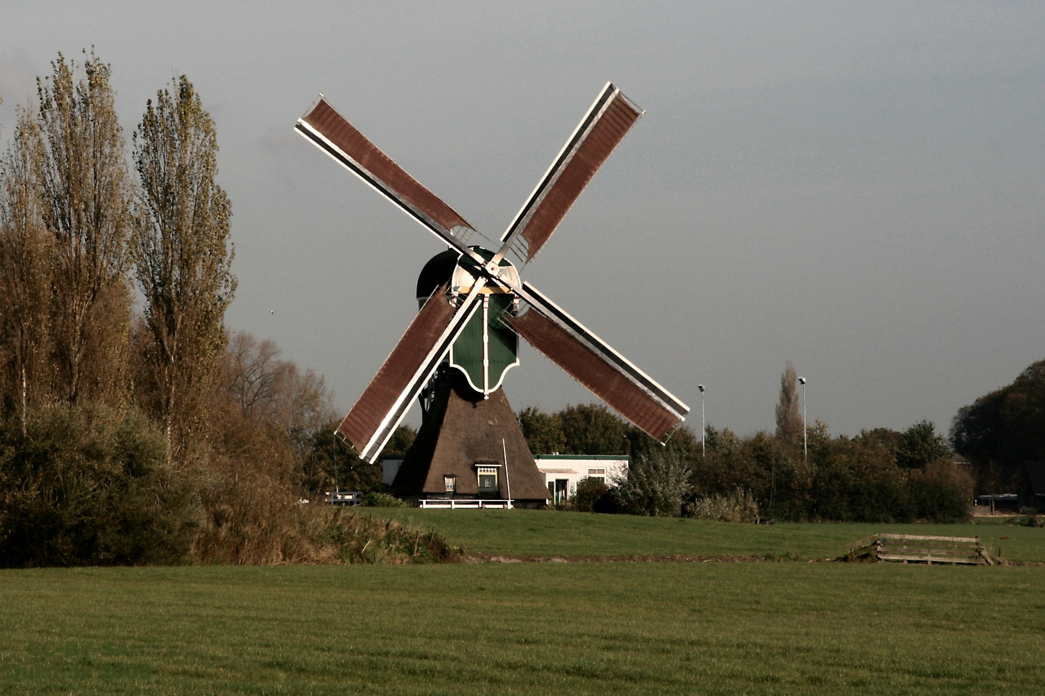 Weijpoortse molen in de media